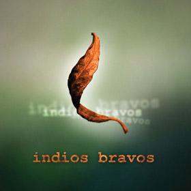 Indios Bravos